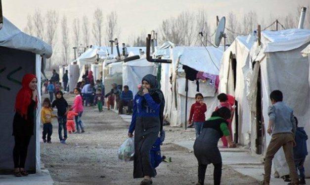 دانستنیهایی درباره پناهجویان سوری