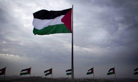 رسانه ها ؛ حمایت تمام قد شورای حقوق بشر از فلسطین و عصبایت اسرائیل و آمریکا و…