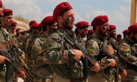 Turkey and Multivariate Equations in Idlib