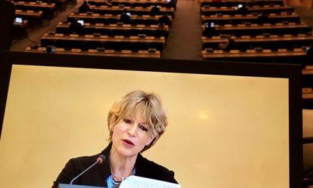 رسانه ها؛ گزارش ویژه سازمان ملل درباره ترور سردار و…