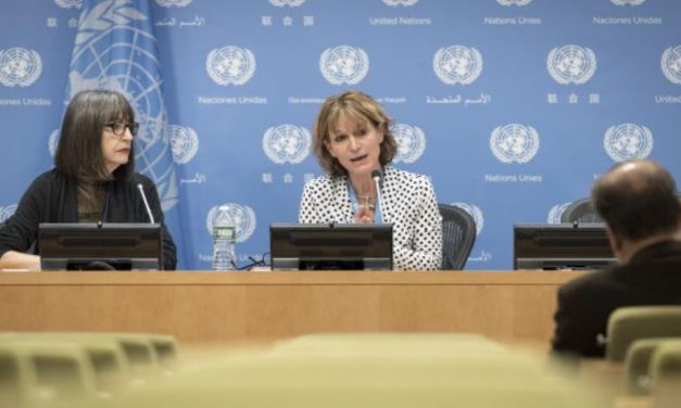 How to Use the Report of UN Human Rights Rapporteur