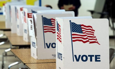 A Review of Allegation of Outside Interference in US Elections