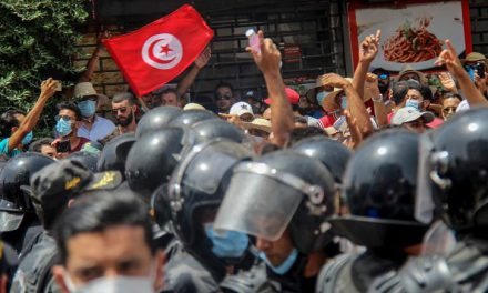 Causes and Grounds for Political Crisis in Tunisia, Its Prospects