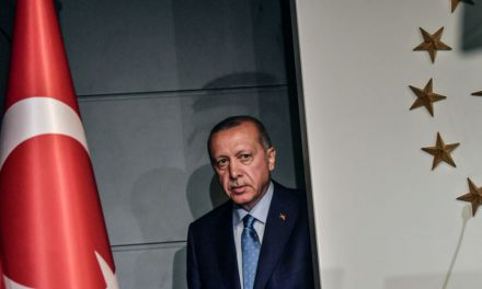 تاکتیک انحرافی اردوغان برای مواجهه با اوضاع اقتصادی نابسامان ترکیه؟